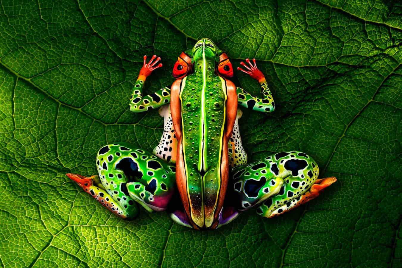 Bodypaint 'Kikker' door Johannes Stoetter